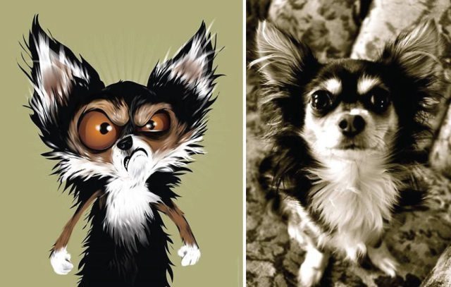 I-draw-pet-portraits-inspired-by-how-their-owners-describe-them-chris-beetow-13