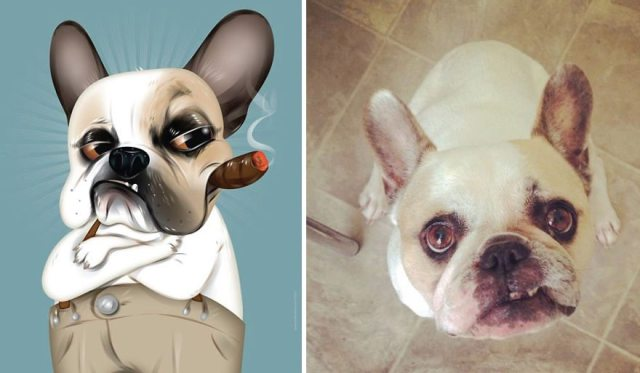 I-draw-pet-portraits-inspired-by-how-their-owners-describe-them-chris-beetow-14
