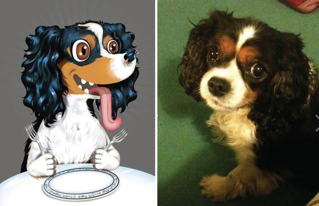 I-draw-pet-portraits-inspired-by-how-their-owners-describe-them-chris-beetow-19.jpg
