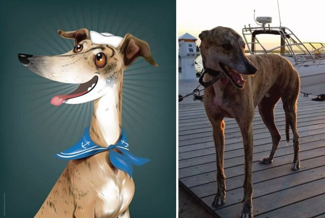 I-draw-pet-portraits-inspired-by-how-their-owners-describe-them-chris-beetow-21